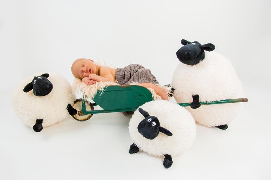 photographe-studio-nouveau-né-famille-enfance-bébé-nourrisson-grossesse-montpellier-nimes-lunel-mauguio-sommières-228.jpg