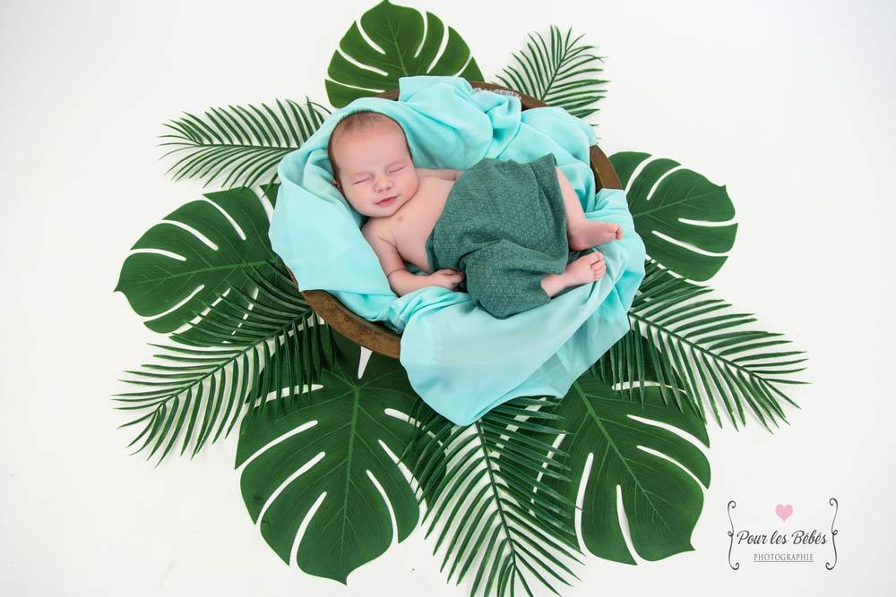 photo-naissance-accessoires-exotique-montpellier